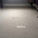 Bedroom-Wall-to-Wall-Carpet-Cleaning-south-san-francisco-A
