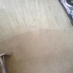 Carpet-Cleaning-south-san-francisco