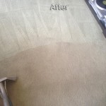 south-san-francisco-Carpet-Cleaning-Company