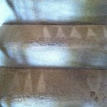 south-san-francisco-Stairs-Carpet-Cleaning