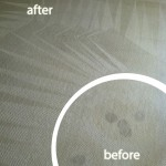 south-san-francisco-Wine-Stain-Carpet-Cleaning