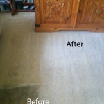 Bedroom-Carpet-Cleaning-south-san-francisco