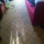 south-san-francisco-Carpet-Clean-before