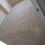 south-san-francisco-Carpet-Clean-room