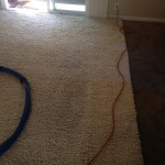 south-san-francisco-Traffic-Area-carpet-cleaners