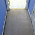 south-san-francisco-Vomit-after-carpet