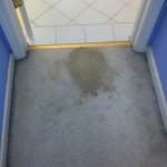 south-san-francisco-Vomit-before-carpet